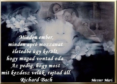Richard Bach4